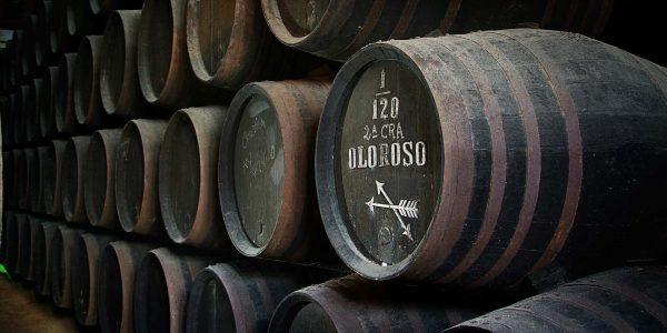Bodega Jerez 05_entorno_43_m